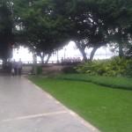 IMG_20120921_172341